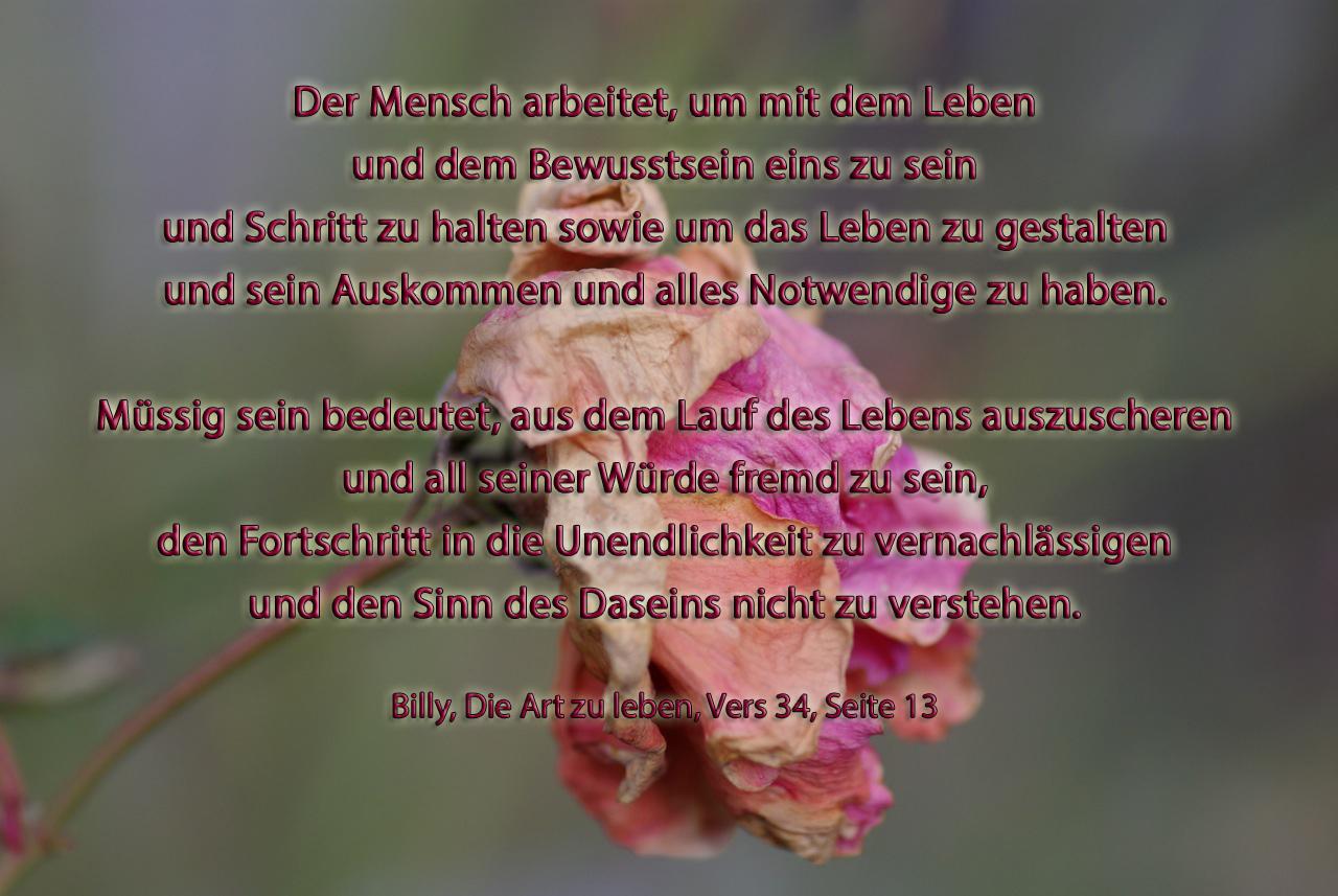 weisheitssprüche | figu-landesgruppe deutschland